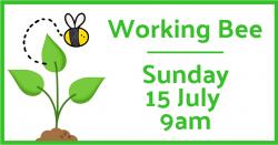 working bee - sunday 15 July